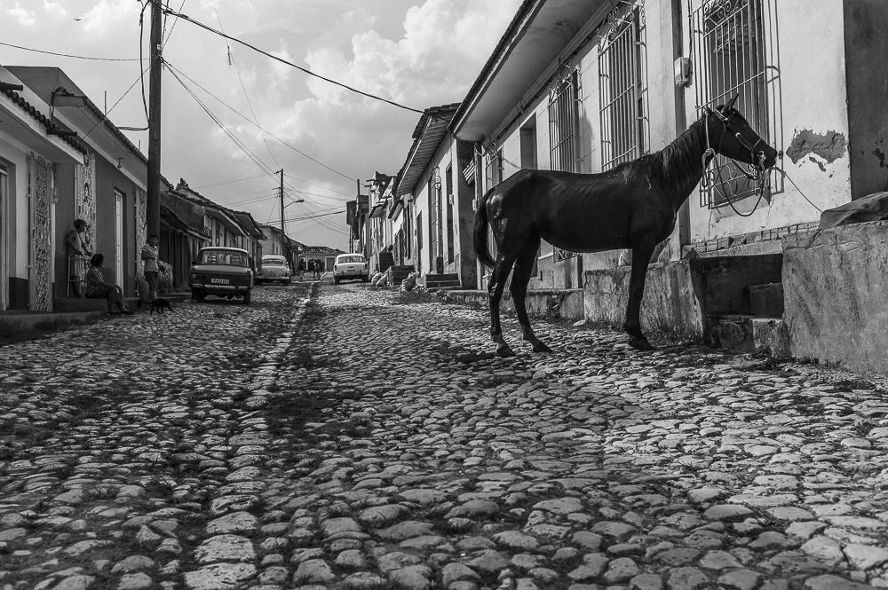 Kuba_2014-24